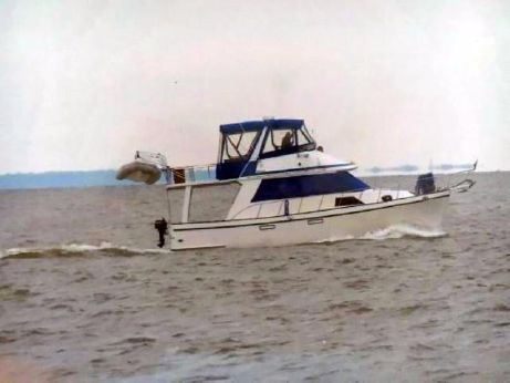 1985 Golden Star 38