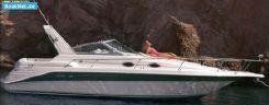 1995 Sea Ray (us) Sea Ray 290 DA Sundancer