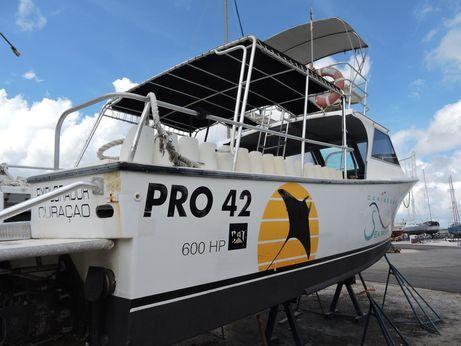 1996 Custom Boats - Rob Shirley Pro 42