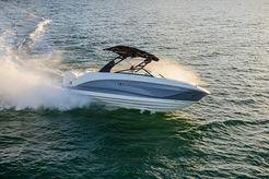 2019 Sea Ray 250 SDX OB