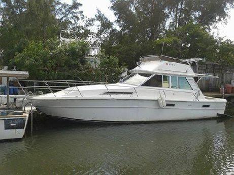 1984 Sea Ray Sport 36