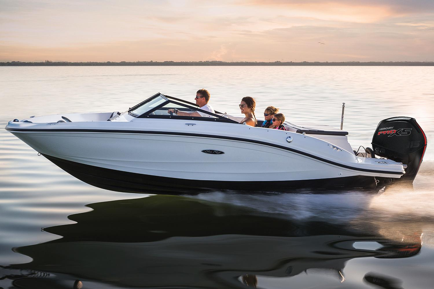 2017 Sea Ray 19 Spx Outboard Power Boat For Sale